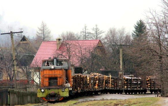 A log train makes its way along the Ukraine's only remaining forestry railway.
