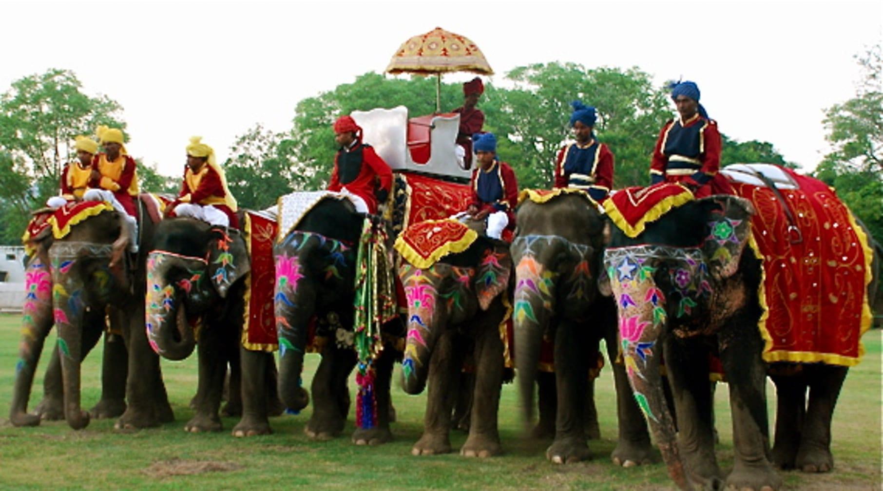 Riding elephants on the Maharajas' Express Indian Splendor, Delhi-Mumbai journey
