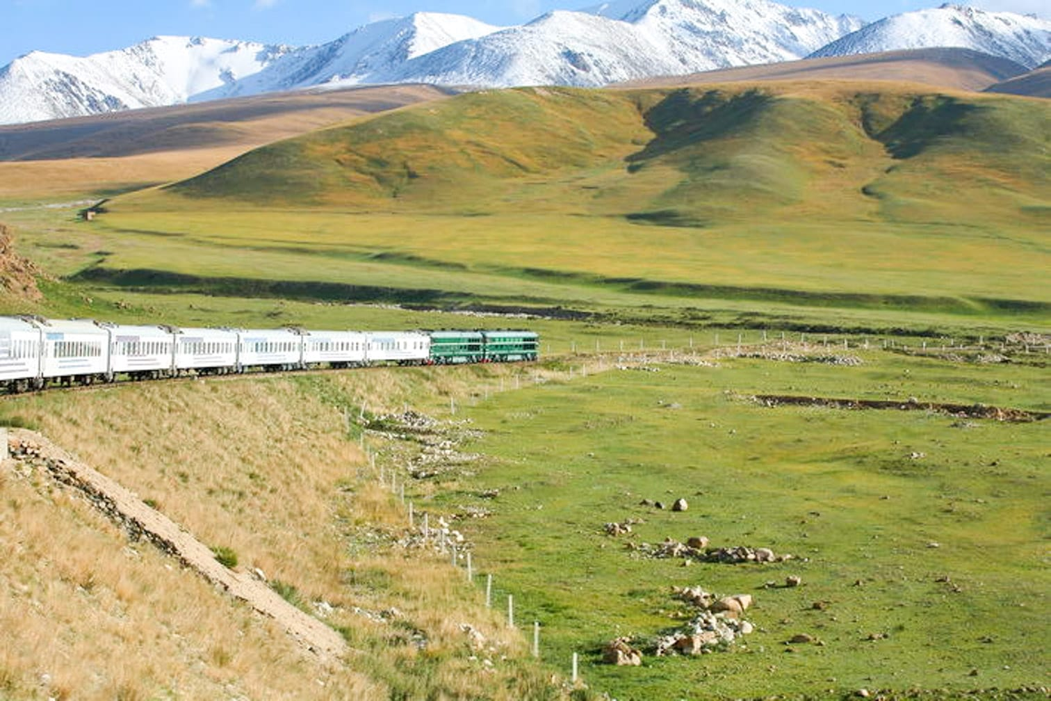 Train going through field on the China and Tibet Rail Discovery journey