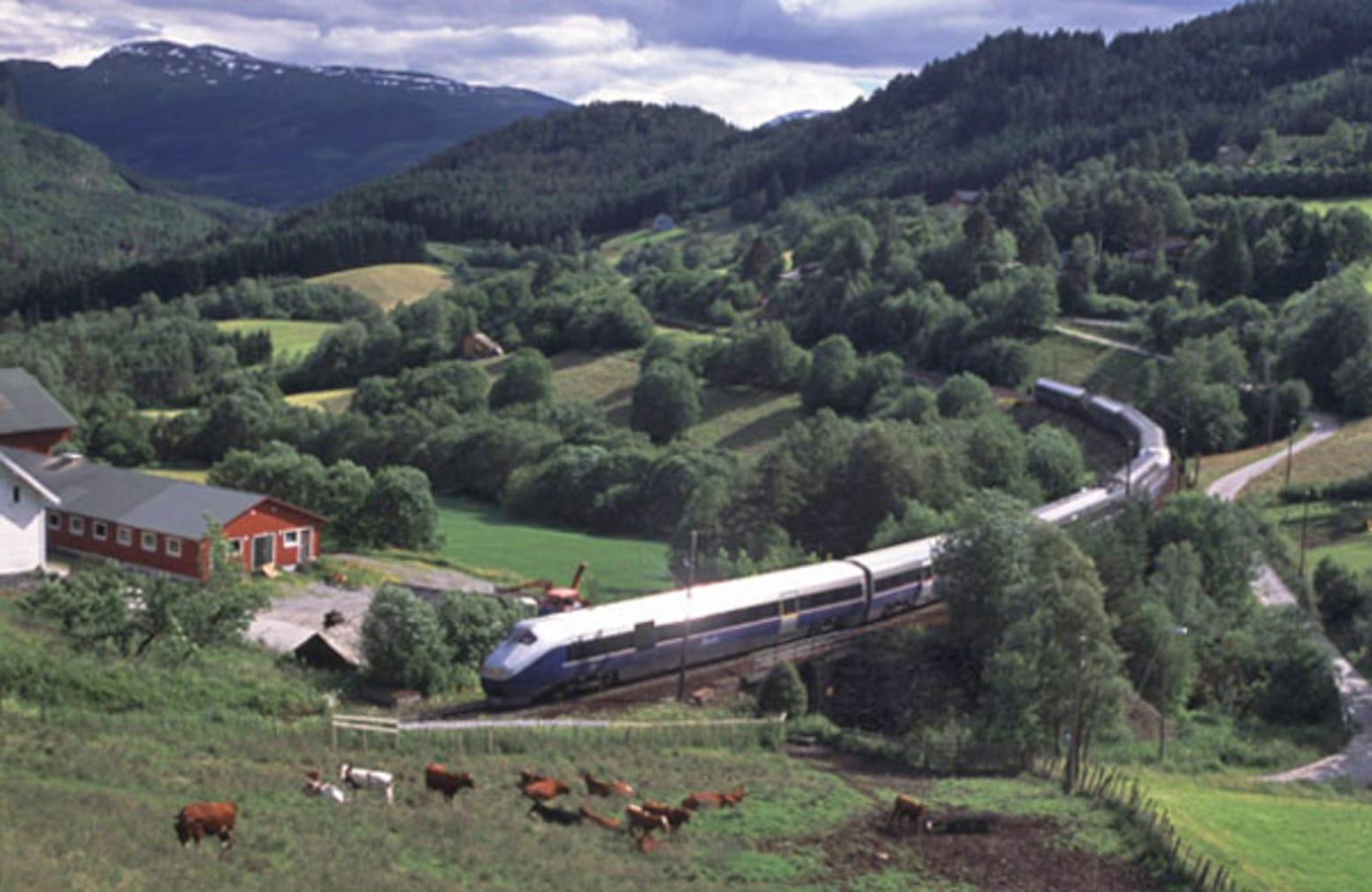 Bergen Railway, Raundalen. (Photo by Rune Fossum)